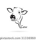 cow, head, vector 31336960