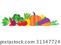 Set of fresh vegetables 31347724
