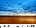 Beautiful Sunset Twilight Sky Over the Sea 31349091