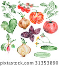 Watercolor vegetables set 31353890