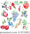 Watercolor fruits set 31353892