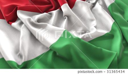 Hungary Flag Ruffled Beautifully Waving Macro 31365434