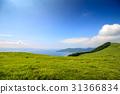 山脊 遊覽 旅遊業 31366834