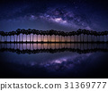 Landscape with Milky way galaxy. 31369777