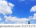 ท้องฟ้าเป็นสีฟ้า,เมฆ,พื้นหลัง 31373175