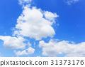 clear, sky, blue sky 31373176