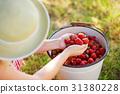 Woman sitting next to bucket full of strawberries 31380228