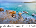 View of Dead Sea coastline at sunset, Israel 31383740
