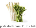 Green and White Asparagus - isolated 31385344