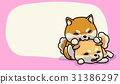 Shiba inu happy time, vector illustration 31386297