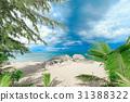sea, beach, tropical 31388322