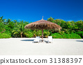 馬爾代夫 海灘 旅遊勝地 31388397