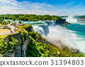 Water rushing over Niagara Falls 31394803