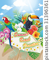 summer18 31396361