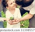 garden, gardening, green 31398557