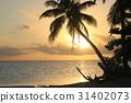 남쪽의 섬 타히티의 해변에서 황금 석양과 노을 Golden Sunset in Tahiti 31402073