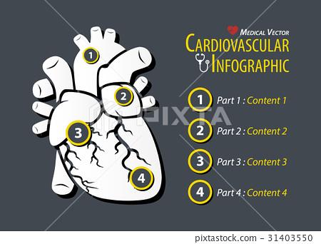 Cardiovascular Infographic . Flat design . 31403550