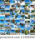 น่าทึ่ง,ชายหาด,สรวงสวรรค์ 31406990