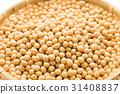 豆 豆子 黄豆 31408837