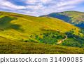 grassy, mountain, summer 31409085