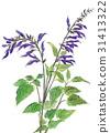 봄, 식물, 꽃 31413322