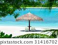 馬爾代夫 海灘 旅遊勝地 31416702