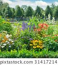 ดอกไม้บาน,แปลงดอกไม้,สวนสาธารณะ 31417214