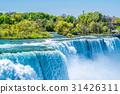 Niagara Falls waterfall 31426311