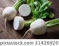 Tasty fresh crude white round japanese radish 31426920