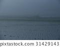 在大阪府鼻子鎮拍攝的霧風景 31429143