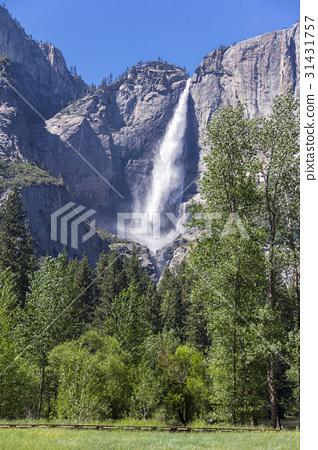 Upper Yosemite Falls. Yosemite National Park, CA 31431757