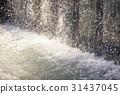 瀑布 上野公園 人工的 31437045