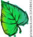Watercolor Paint Of Cordate Leaf 31438641