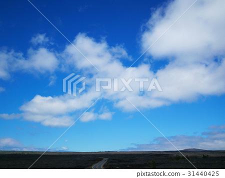Land of Hawaii Island - Stock Photo [31440425] - PIXTA