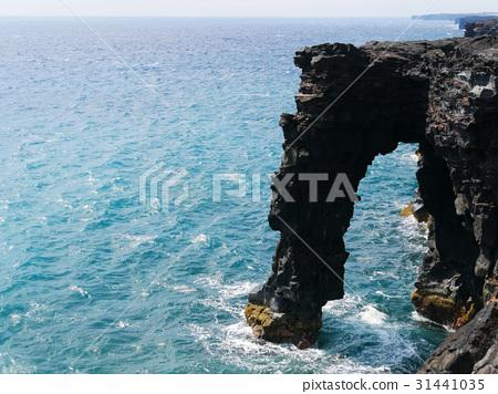 Coast of Hawaii island 31441035