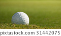Golf ball on course with green grass 31442075