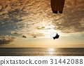 Silhouette of flying paraglider over the sea  31442088