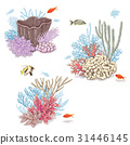Corals and Swimming Fishes 31446145