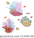Corals and Swimming Fishes 31446146
