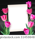 Greeting card with tulips around the sheet of 31450648