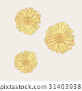 Chrysanthemum  flower  , sketch vector. 31463938