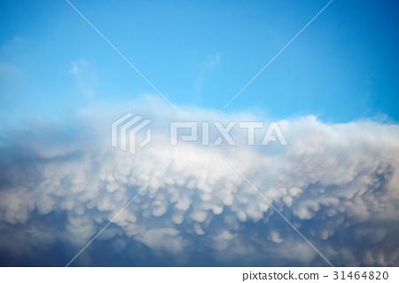 乳狀雲 31464820