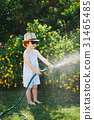 little boy watering the garden with hose 31465485