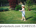 hose, water, garden 31465535