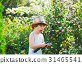 little boy watering the garden with hose 31465541