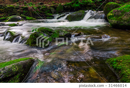 small cascade on the stream among bouders 31466014