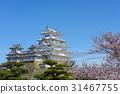 himeji castle, cherry blossom, cherry tree 31467755