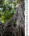 Angkor Thom, Cambodia 31471338