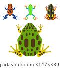 向量 向量圖 青蛙 31475389