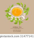 stevia cup of tea 31477141